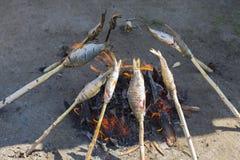 贝加尔湖omul在煤炭被烤 免版税库存图片
