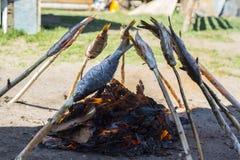 贝加尔湖omul在煤炭被烤 图库摄影