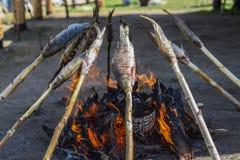 贝加尔湖omul在煤炭被烤 库存图片