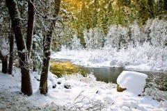 加州冻结的merced河优胜美地 图库摄影