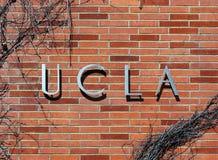 加州大学洛杉矶分校 免版税库存图片