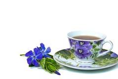 加州桂茶 免版税库存照片