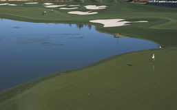 加州经典高尔夫球棕榈泉 库存照片