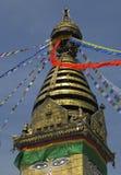 加德满都尼泊尔stupa swayambhunath 库存图片