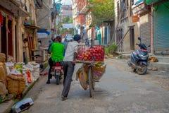 加德满都,尼泊尔2017年10月15日:一辆自行车的未认出的人用有些苹果结果实在一个金属篮子里面和 库存图片