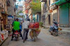 加德满都,尼泊尔2017年10月15日:一辆自行车的未认出的人用有些苹果结果实在一个金属篮子里面和 免版税库存图片