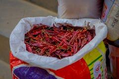 加德满都,尼泊尔2017年10月15日:关闭在大袋里面的干胡椒在一个市场上在加德满都,尼泊尔 免版税图库摄影
