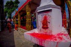加德满都,尼泊尔- 2017年9月04日:关闭被绘一个白色的结构与一些供奉和, Bindabasini寺庙 库存图片