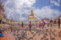 加德满都,尼泊尔2017年10月15日:走和喂养在巨大的响铃前面的未认出的人民鸽子在a下 库存图片