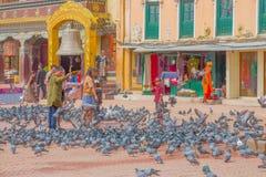加德满都,尼泊尔2017年10月15日:走在正方形围拢的未认出的人民一百在前面的鸽子 库存照片