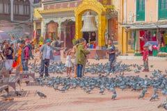 加德满都,尼泊尔2017年10月15日:走在正方形围拢的未认出的人民一百在前面的鸽子 免版税库存照片