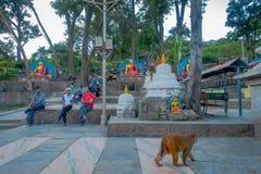 加德满都,尼泊尔2017年10月15日:走接近小stupas的未认出的人民围拢由祷告旗子在 免版税库存图片