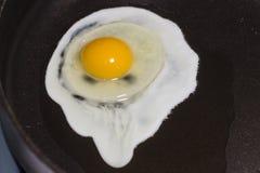 加扰的鸡蛋 库存图片