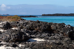 加拉帕戈斯海景 库存照片