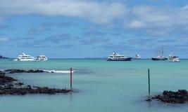加拉帕戈斯海滩在Puerto阿约鲁 免版税库存图片