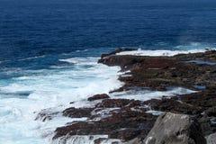 加拉帕戈斯群岛海景 库存照片