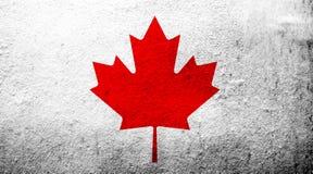 加拿大'枫叶的'国旗没有红色委员会 难看的东西背景 库存例证