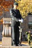 加拿大人战士 图库摄影