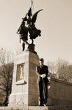 加拿大人战士 库存照片