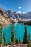 加拿大人的罗基斯梦莲湖, vertbcal 免版税图库摄影