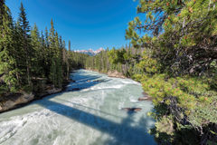 加拿大人罗基斯,山河 库存照片