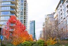 加拿大住宅 图库摄影