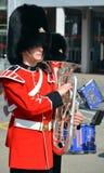 加拿大军队 库存照片