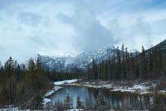 加拿大冬天横向 免版税库存图片