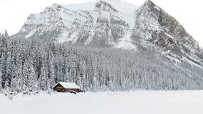 加拿大冬天 免版税库存图片