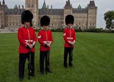加拿大卫兵 库存照片