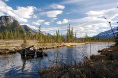 加拿大原野 库存图片