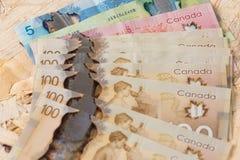 加拿大和欧洲金钱有木背景 免版税库存图片