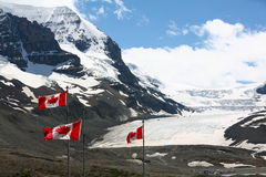 加拿大哥伦比亚icefield 库存照片