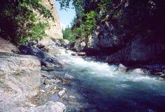 加拿大小河kootenay山国家公园 免版税库存照片