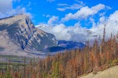 加拿大岩石 免版税库存照片