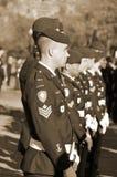 加拿大战士 免版税图库摄影