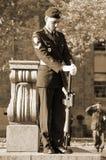 加拿大战士 免版税库存图片