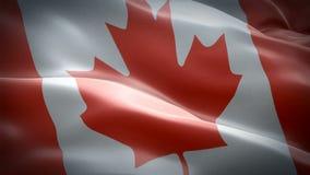 加拿大挥动的旗子 r : 加拿大旗子HD决议Backgrou 向量例证