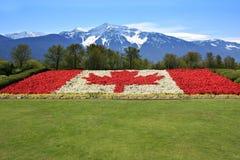 加拿大旗子和山 库存照片