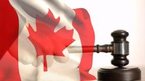 加拿大旗子和惊堂木的数字动画 向量例证