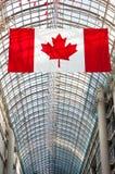 加拿大旗子和玻璃屋顶在背景中 免版税图库摄影