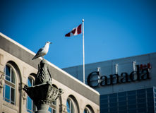 加拿大旗子在渥太华安大略 库存图片