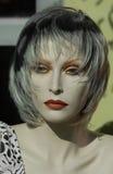加拿大时装模特蒙特利尔 免版税库存照片