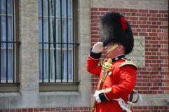 加拿大更改的卫兵渥太华 免版税库存图片