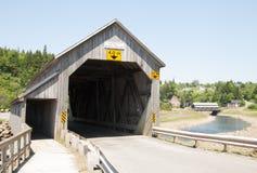 加拿大桥梁 免版税库存图片