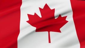 加拿大沙文主义情绪在风录影镜头现实加拿大旗子背景中 加拿大旗子使成环的特写镜头 向量例证