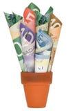 加拿大现金 免版税图库摄影