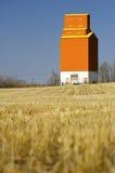 加拿大电梯谷物大草原 库存图片