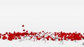 加拿大的旗子从3d立方体创造了在慢动作 股票视频