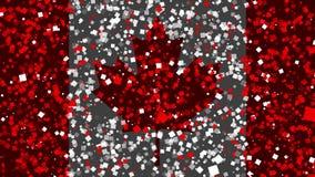 加拿大的旗子庆祝的生气蓬勃的背景从烟花出现 股票录像
